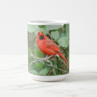 THE RED CARDINAL morphing mug