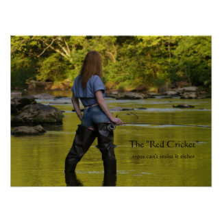 """The """"Red Cricket""""-trout can't res... Poster"""