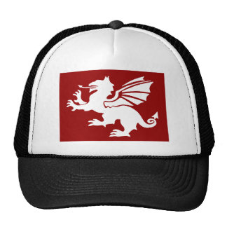 The Red Dragon Mesh Hat