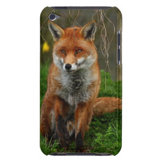 The Red Fox iPod Case-Mate Case