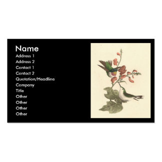 The Red-throated Hummingbird (Trochilus colubris) Business Card