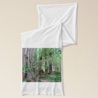 The Redwoods - Sequoia Scarf