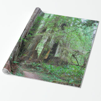 The Redwoods - Sequoia Wrapping Paper