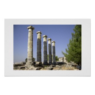 The remainings of ancient Rome Poster