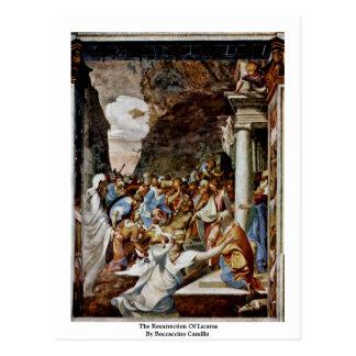 The Resurrection Of Lazarus By Boccaccino Camillo Postcards