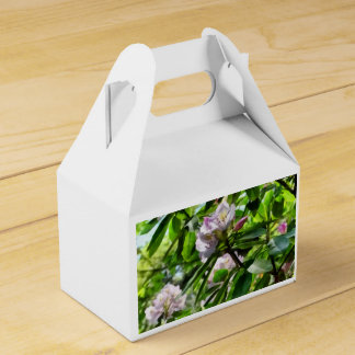 The Rhododendrons Are In Bloom Favour Box