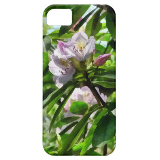 The Rhododendrons Are In Bloom iPhone 5 Cases