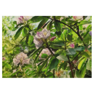 .The Rhododendrons Are In Bloom Wood Poster