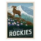 The Rocky Mountains   Colorado Postcard