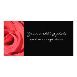 The Rose by Kathryn Trembach Photography Picture Card