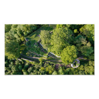 The ruin | poster print aerial photograph