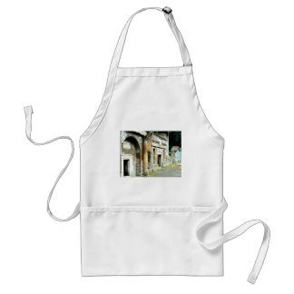 The Ruins of Pompeii - marketplace with temples Aprons