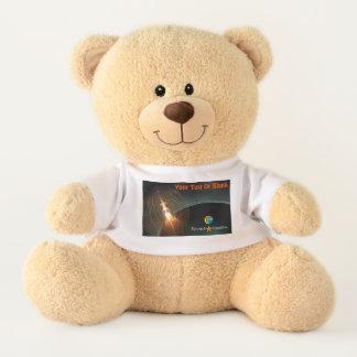 The Russian Moon Landing Teddy Bear