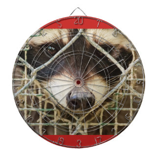 the sad look of a raccon behind the cage dartboard