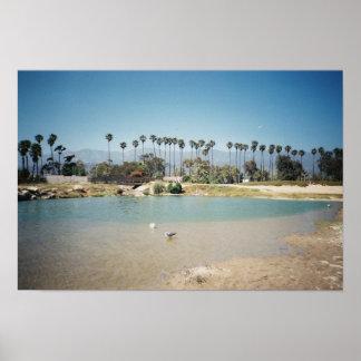 The Santa Barbara coast Poster