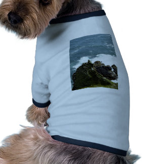 the sea and birds pet tshirt