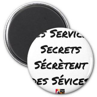 THE SECRET SERVICES SECRETE MALTREATMENT MAGNET