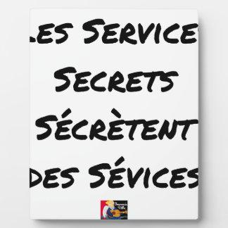 THE SECRET SERVICES SECRETE MALTREATMENT PLAQUE