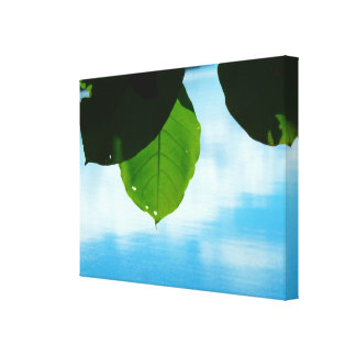 The serenity of the leaf canvas print