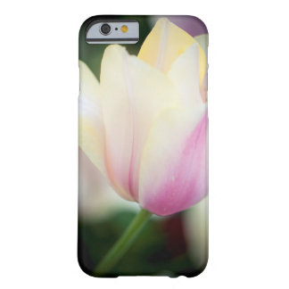 The shades on a tulip barely there iPhone 6 case