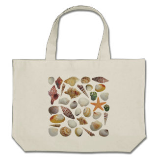 The Shell Collector CTC L.I.F.E. Bag