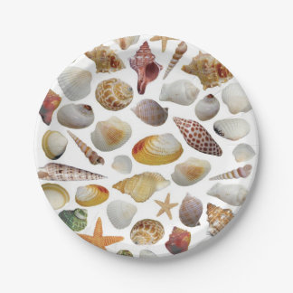 The Shell Collector Paper Plates 7 Inch Paper Plate