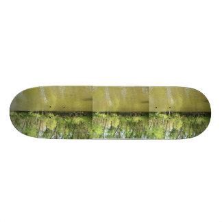 The Shore line. 20 Cm Skateboard Deck
