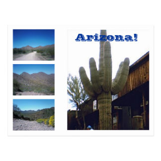 The Sights of Arizona! Postcard