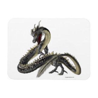 The Silver Dragon Rectangular Photo Magnet