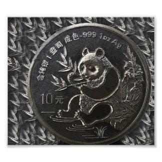 The Silver Panda. Photographic Print
