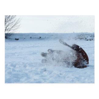 The snow bath - postcard