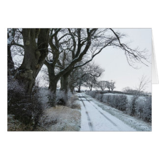 """The Snowy Lane"" Northumberland England Card"