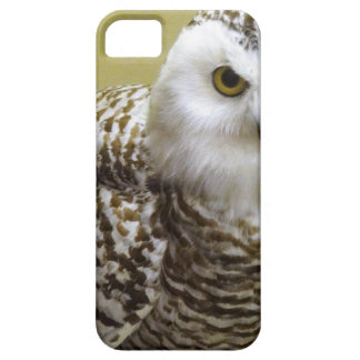 The Snowy Owl Barely There iPhone 5 Case