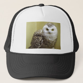 The Snowy Owl Trucker Hat