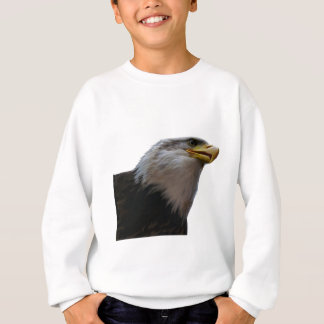 THE SOARING FREEDOM SWEATSHIRT