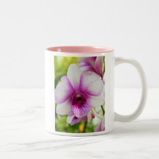 The Song Of The Orchid Mugs