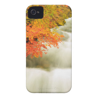 The Soteska Vintgar gorge in Autumn iPhone 4 Covers