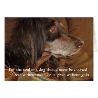 "The Soul of a Dog - ""For Milly"" Card"