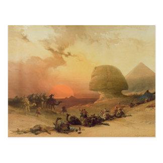 The Sphinx at Giza Postcard