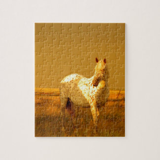The Spotted Horse In The Golden Glow of A Prairie Jigsaw Puzzle