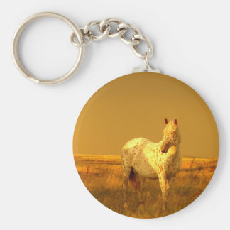 The Spotted Horse In The Golden Glow of A Prairie Key Ring