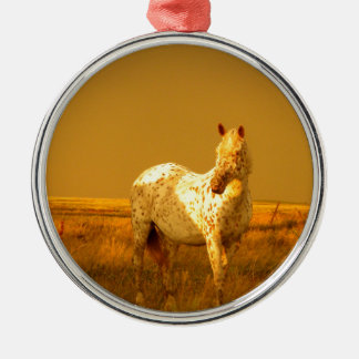 The Spotted Horse In The Golden Glow of A Prairie Metal Ornament