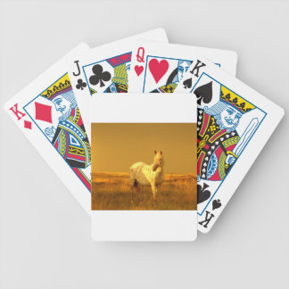 The Spotted Horse In The Golden Glow of A Prairie Poker Deck