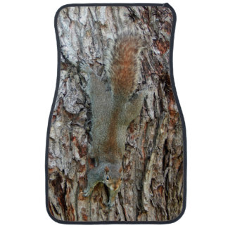 The Squirrel Is Camouflaged Car Mat