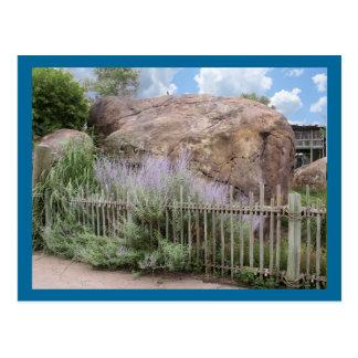 The Stone Postcard