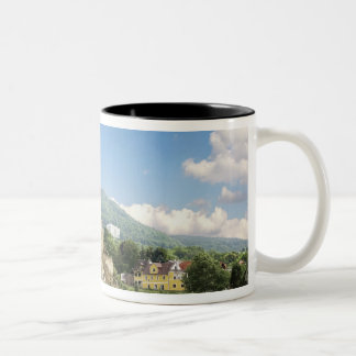 The stunning Schonbuhel Castle sits above the Two-Tone Mug