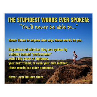 The Stupidest Words Ever Spoken - Motivational Poster