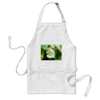 The Sun in a Flower Apron
