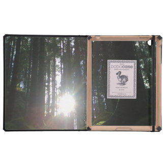 The sun in the forest covers for iPad
