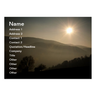 The sun is shining business card